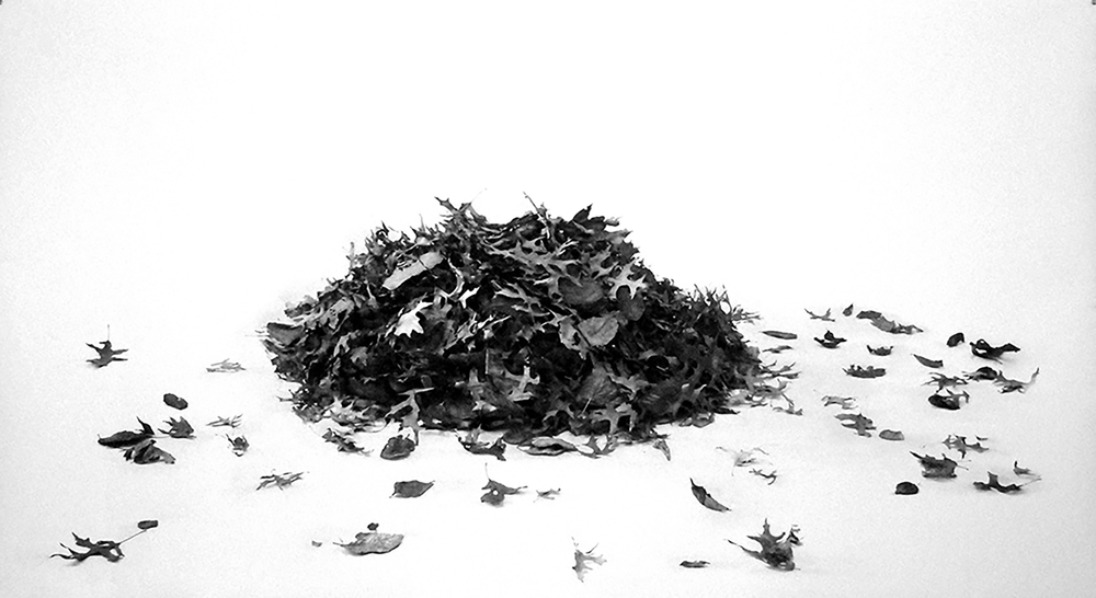 Leaf Pile 2 , 2016, Hand-worked digital print on Somerset velvet paper, 44 x 81 inches