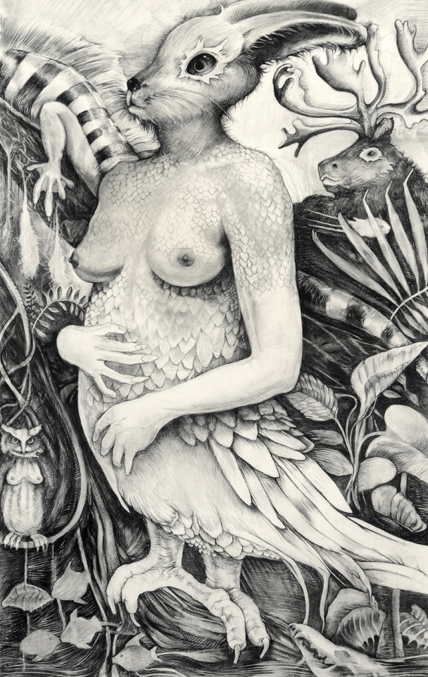 Hybrid Rabbit, Self Portrait , 2012, Charcoal on paper, 50 x 36 inches
