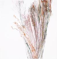 Adaptation , 2017, Pastel, pastel pencil on Bristol paper, 19 x 19 inches