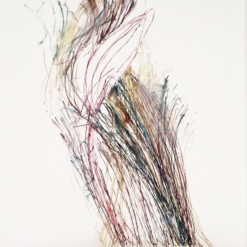 Pod , 2017, Pastel, pastel pencil on Bristol paper, 19 x 19 inches