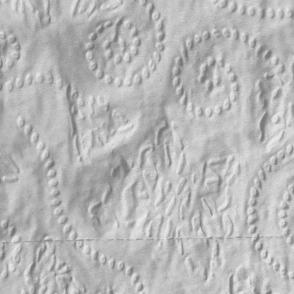 Tissue,  2017,  Digital print, 4'' x 4''