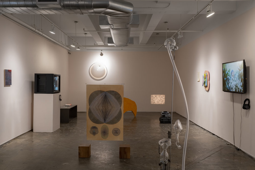 Installation view of  Let's try listening again
