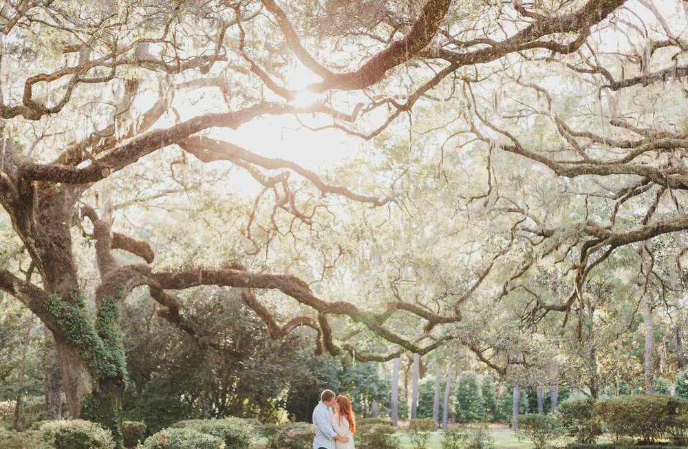engaged couple standing under trees in eden gardens state park