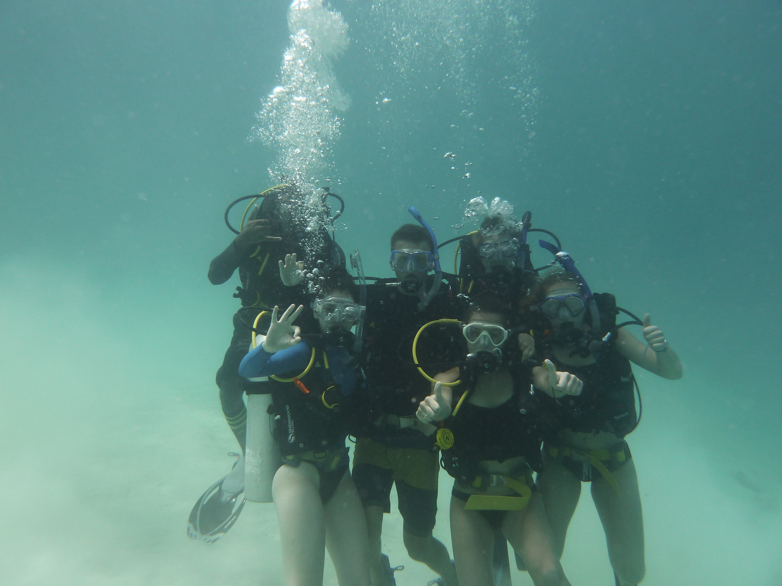 Having performed their final skill, these students are now fully certified divers.