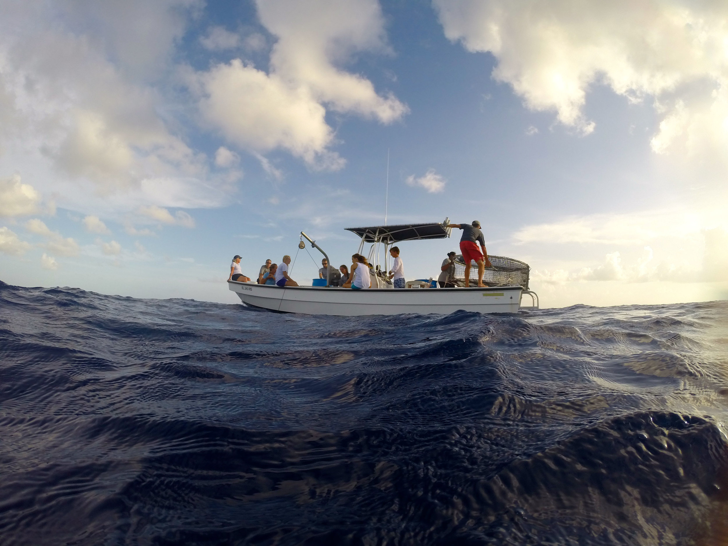 The Deepsea Survivorship team pulls in long lines over the Exuma Sound.