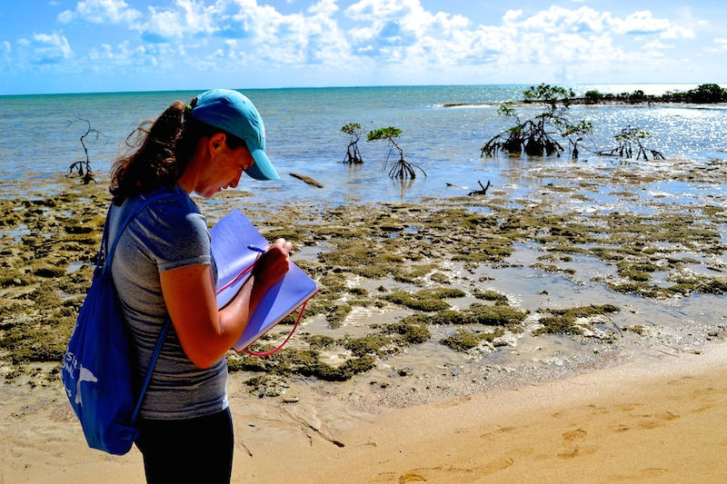 Emily taking notes during Marine Ecology on the students' silent walk