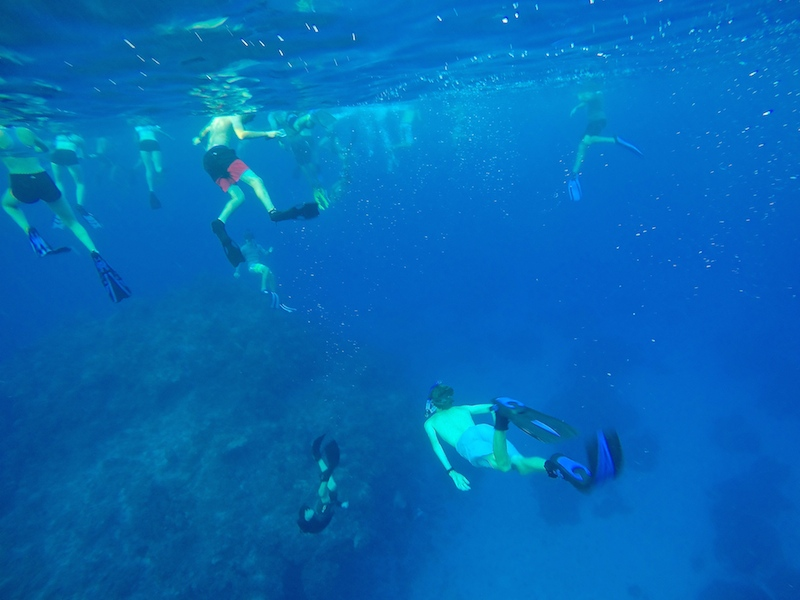 Students free diving
