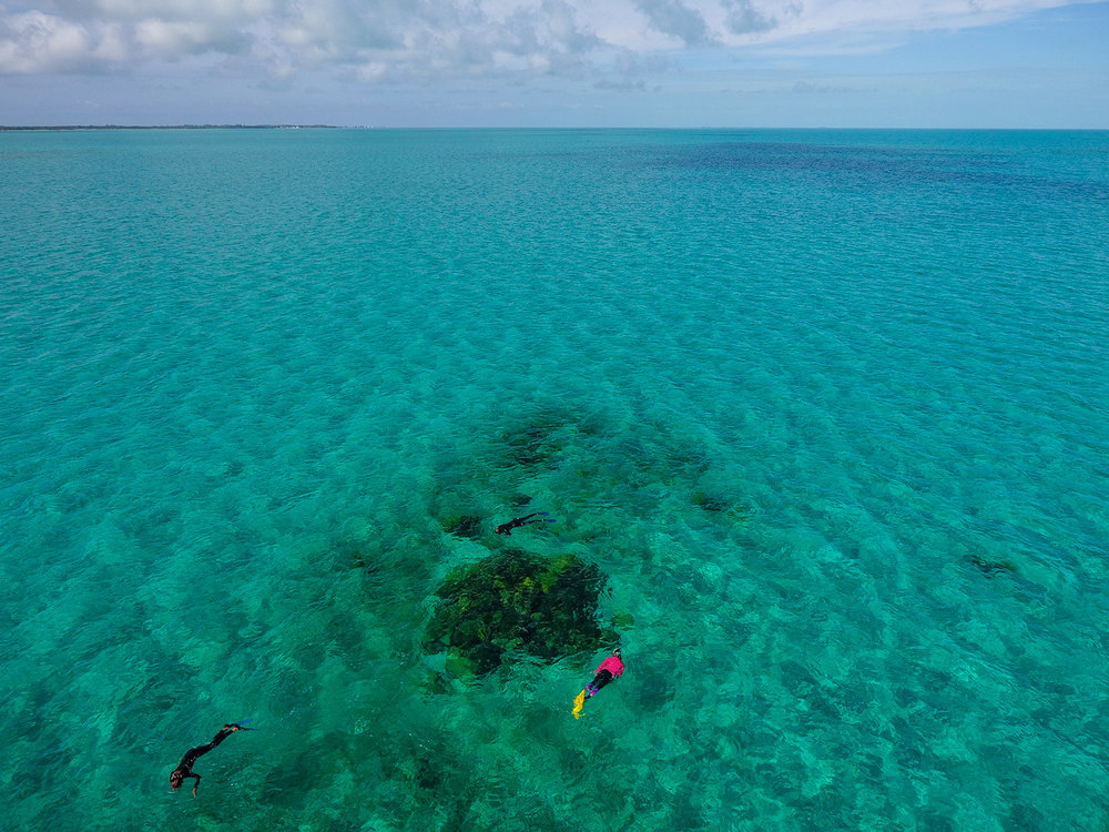 Students snorkeling over a patch reef.