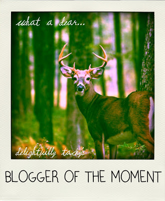 Blogger of the Moment award