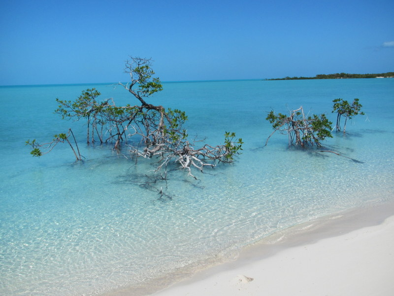 A view from a beach on Hummingbird Cay, Exuma