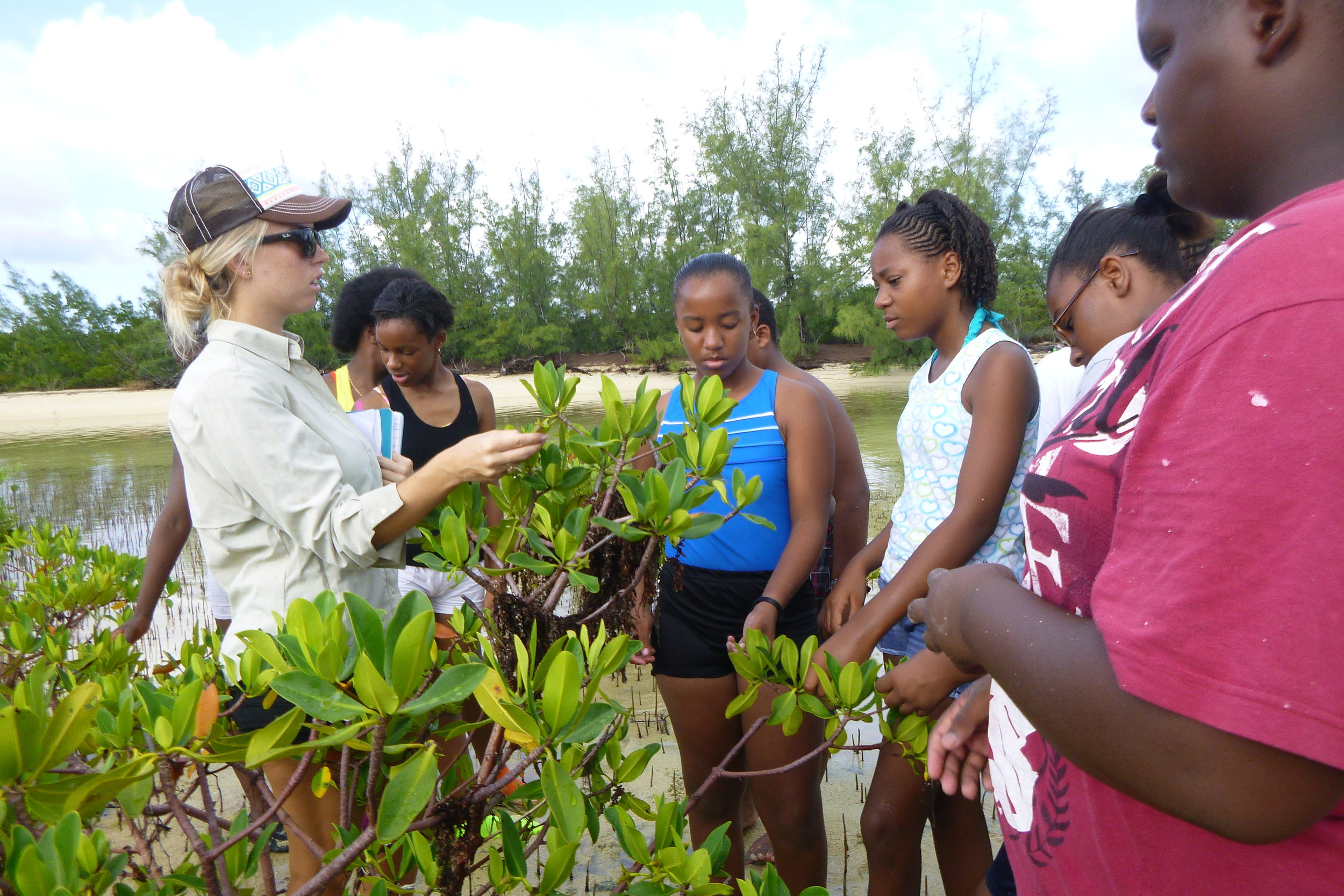 Tiff Gray teaches DCMS students about mangroves.