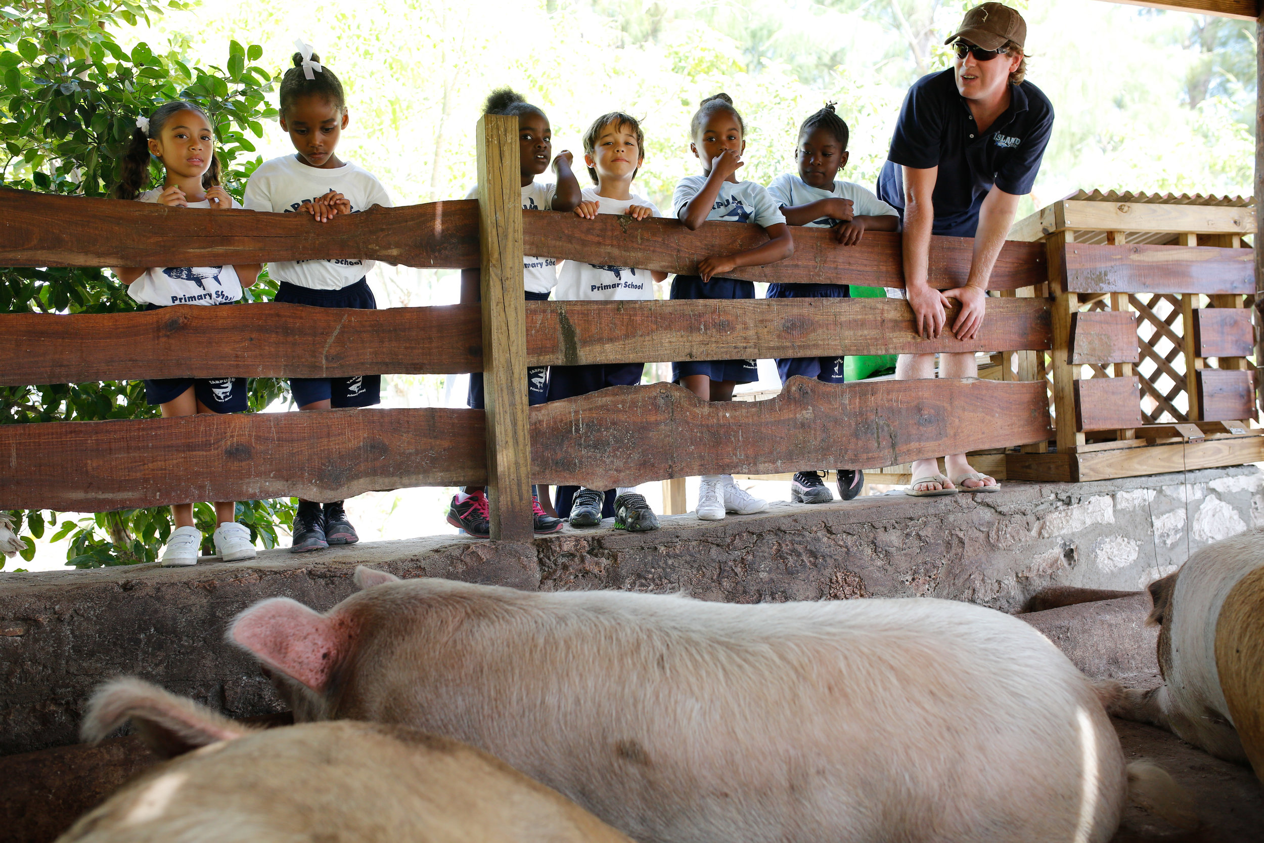 The kids explored the farm and got to feed the pigs