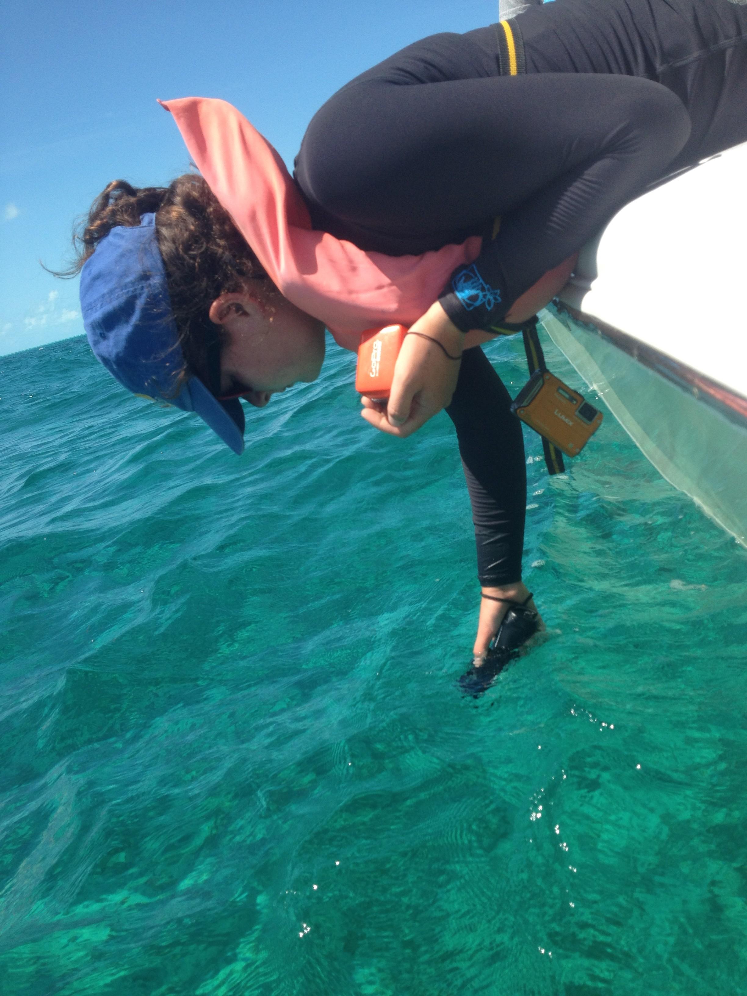 Ellie Rubenstein stone crab traps