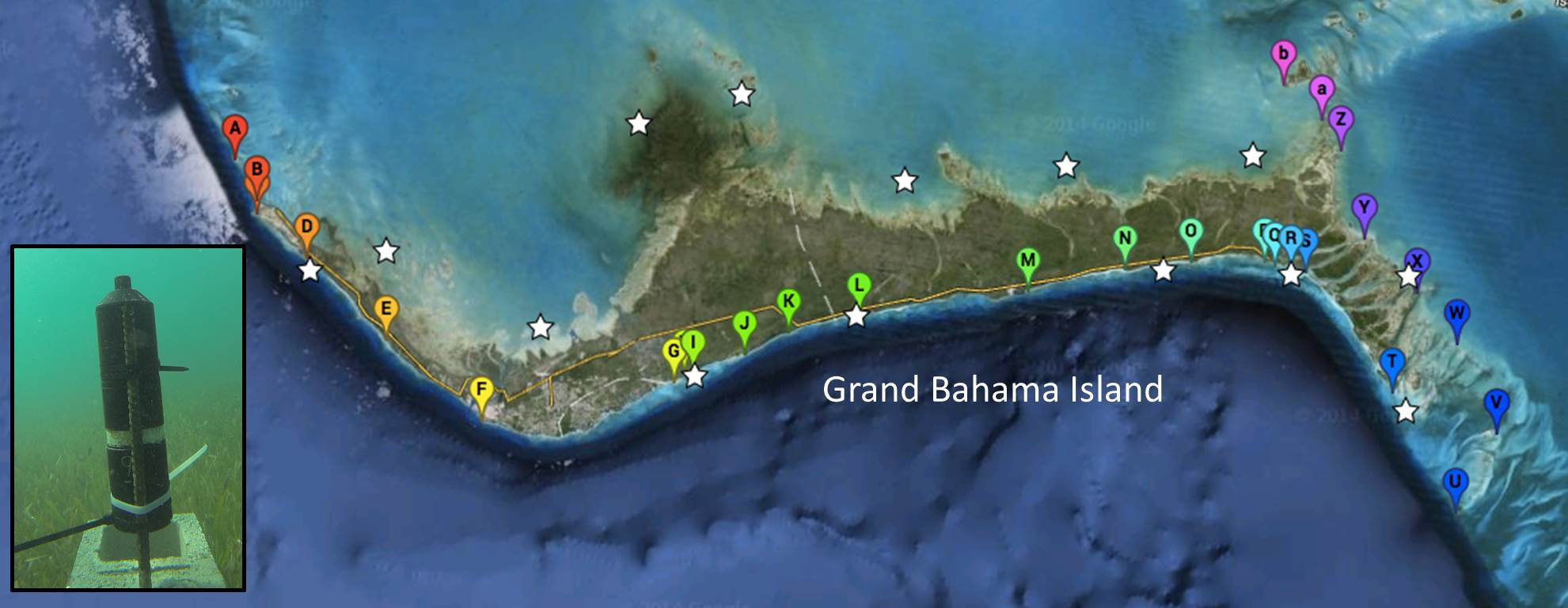 Fig. 3: Location of acoustic receivers (inset image) deployed around Grand Bahama. Bonefish typically inhabit shallow flats, but migrate as large schools to deep water during spawning events. The location of the acoustic receivers (balloons) will allow the fish to be tracked as they migrate through shallow habitat en route to spawning aggregations. Stars denote location of bonefish capture/tagging.