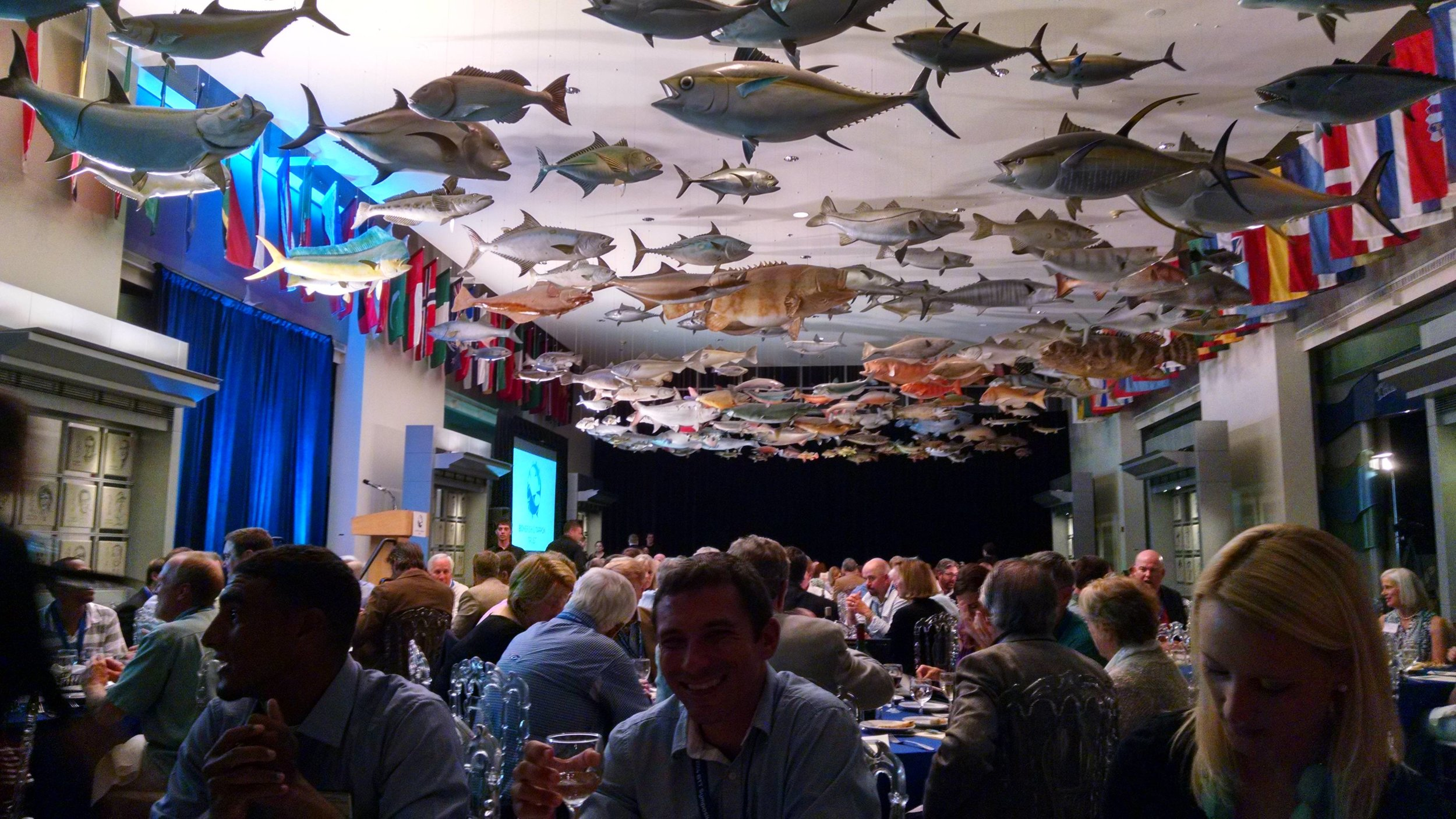 Conference dinner at the IGFA Hall of Fame and Museum. The future of flats conservation was discussed beneath replicas of world record fish.