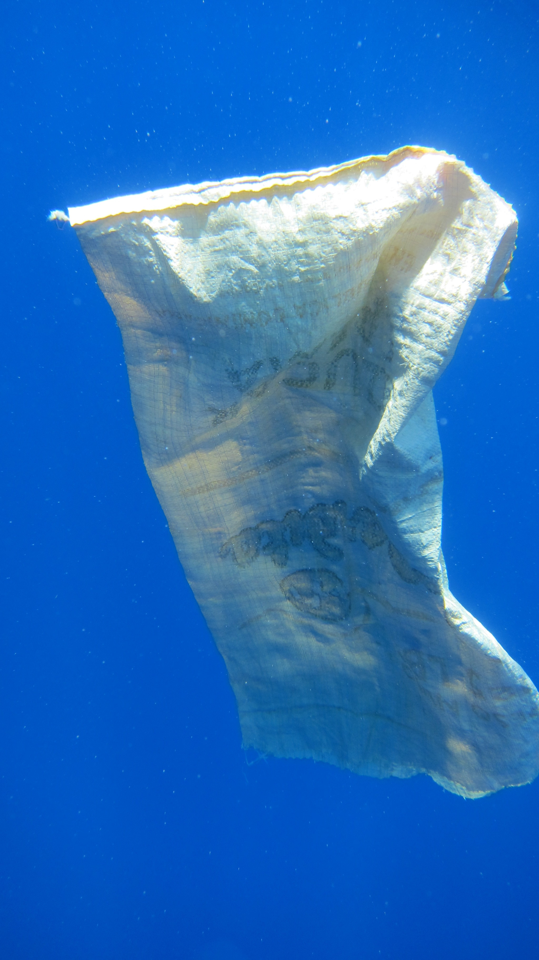 Fig. 2: A sugar bag originating from the Dominican Republic. Within a few years this bag will break up into tiny microplastics, easily available for accidental consumption by marine fishes.