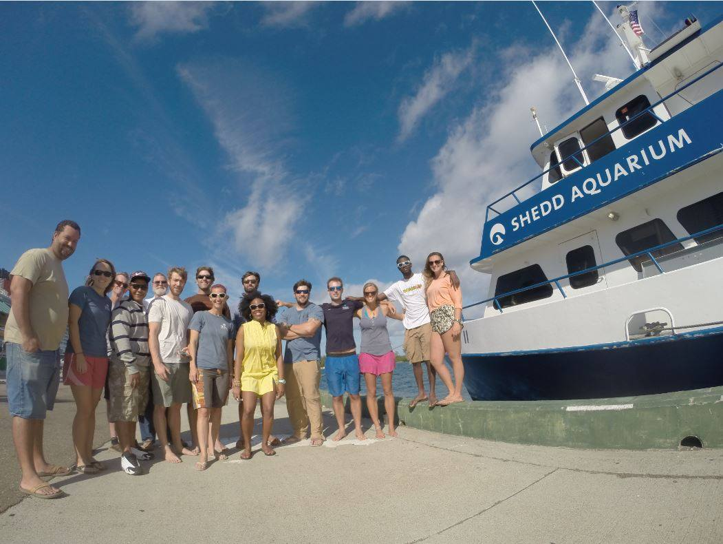 The researchers that took part in the Nassau grouper work in front of the Shedd Aquarium vessel