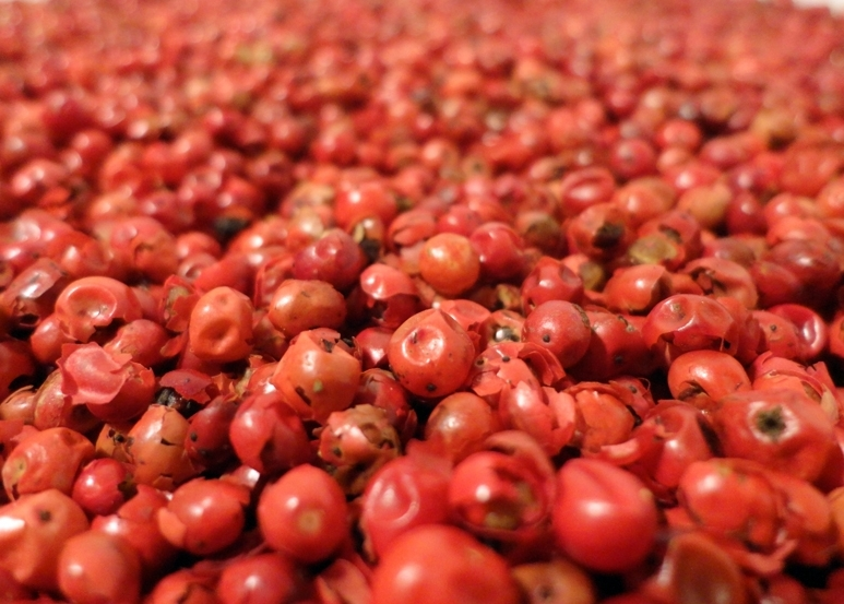 THE WARMTH OF SPICE – pink peppercorns, cassia