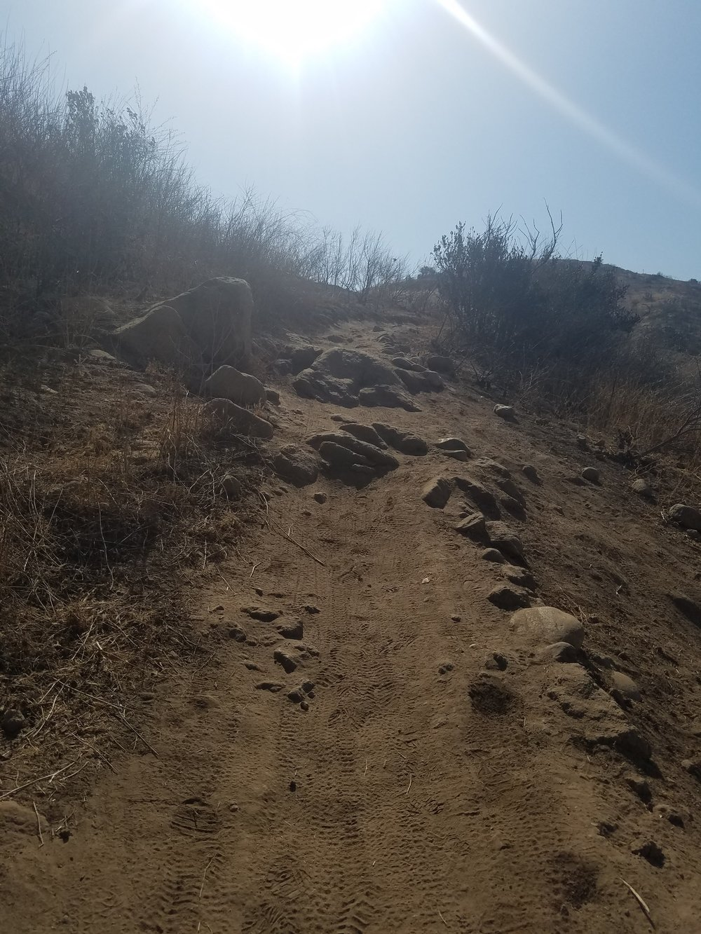 Sometimes, my trail looks like this.