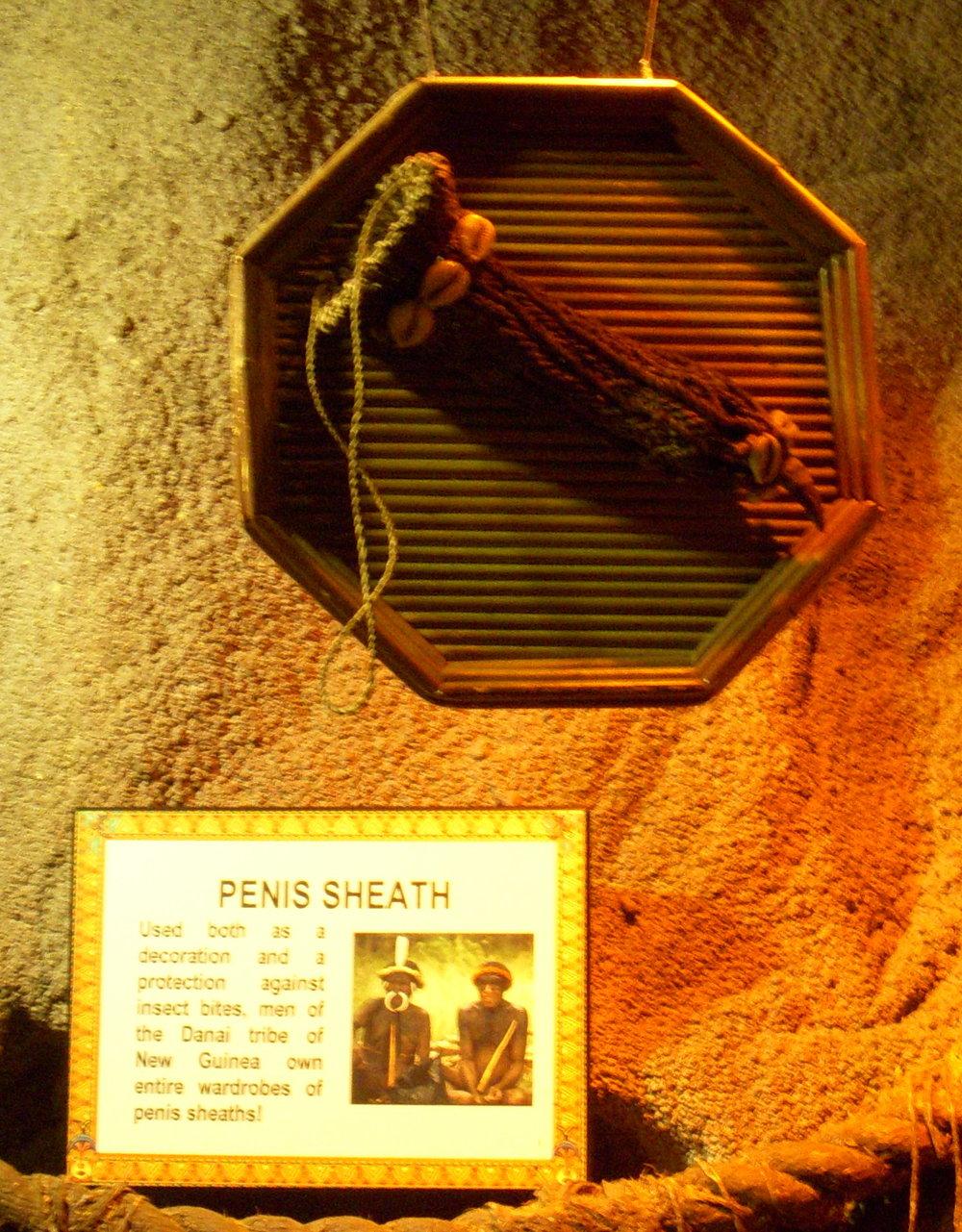 Penis sheath