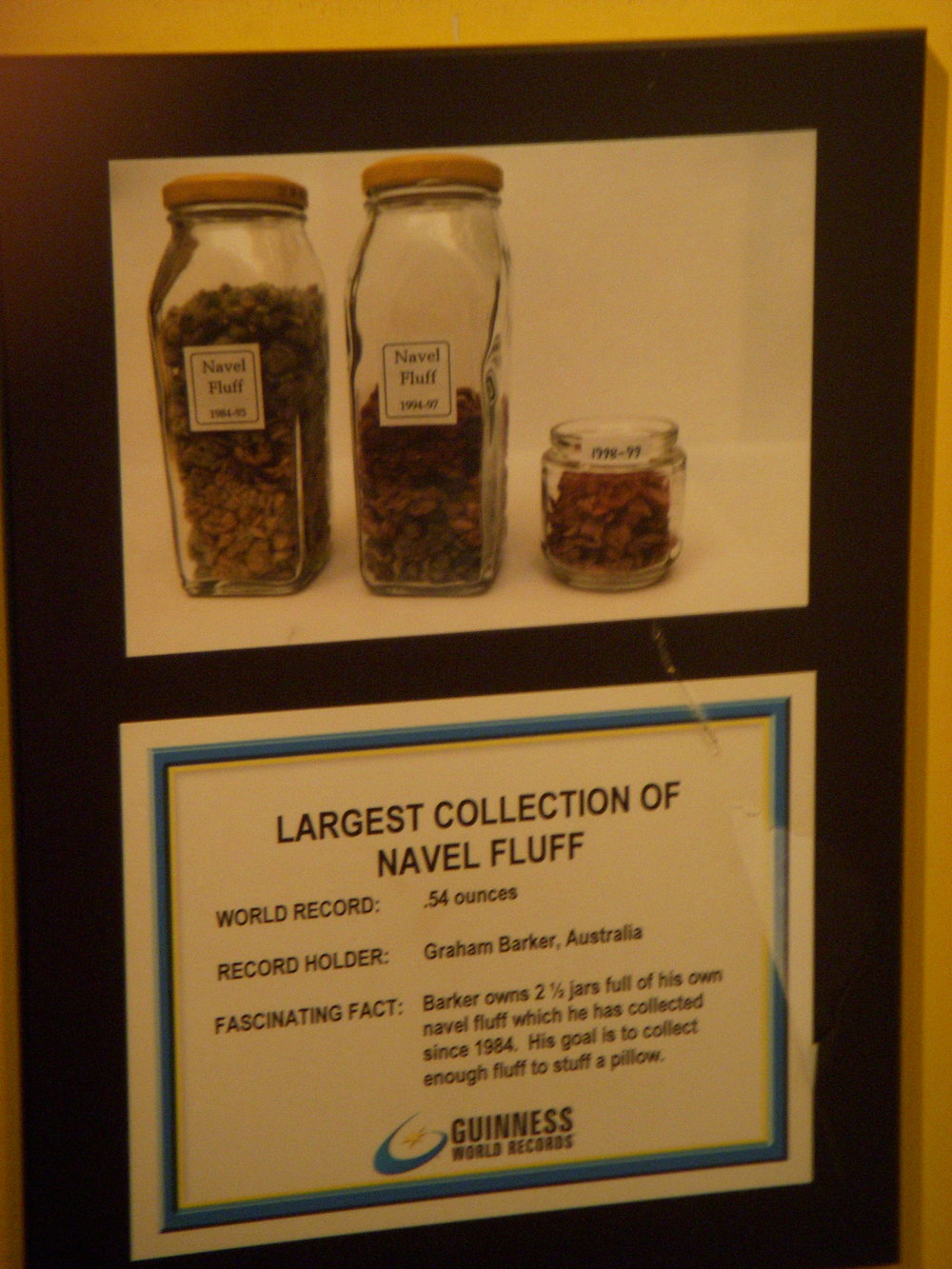 Navel fluff