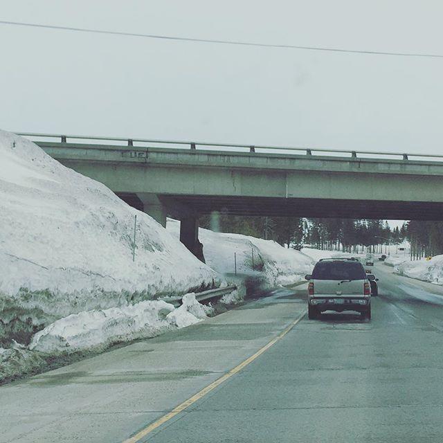 Things seen on the road to Reno. Ep. 3.  #DontEatDirtySnow #saltordie #I80
