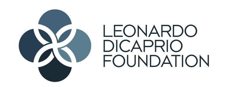 logo-ldf.jpg