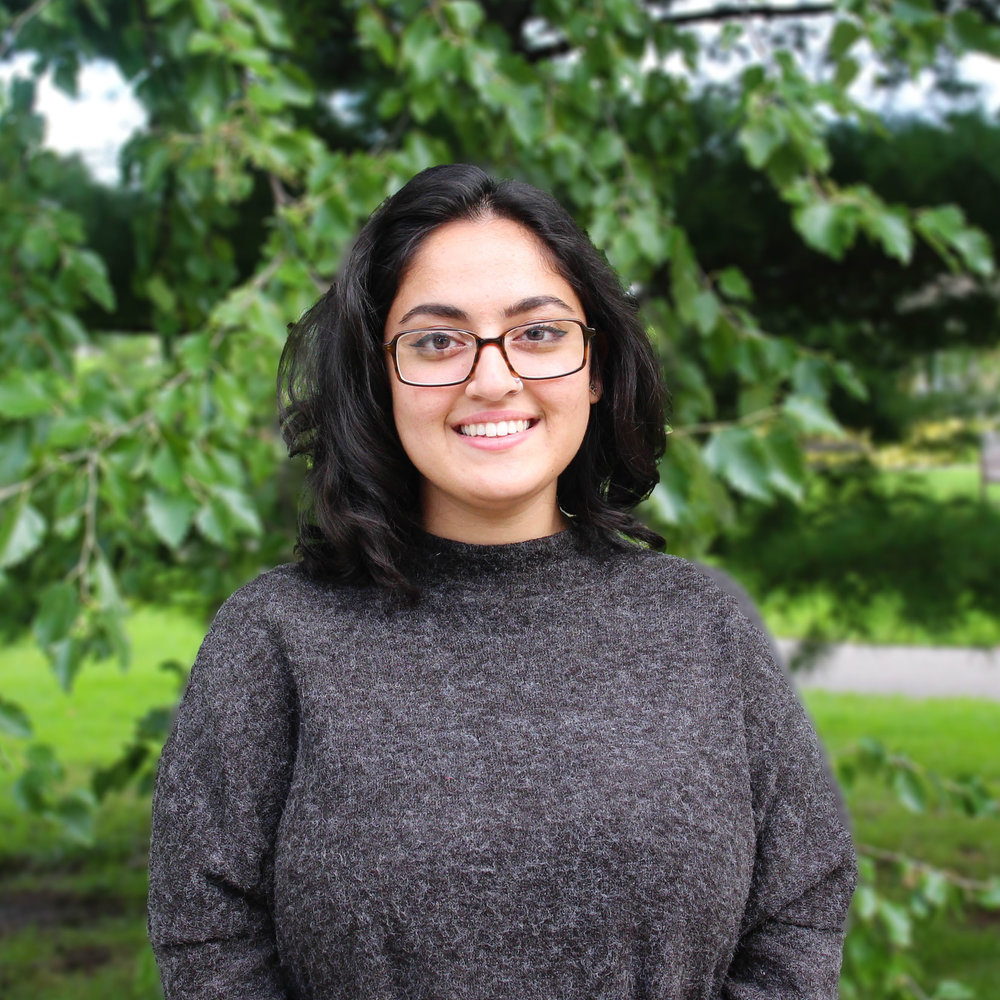 abeer syedah - director of diversity & inclusionAbeer is a graduate of the University of Minnesota - Twin Cities where she received her Bachelor of Arts in Political Science with an academic focus on critical race and gender studies. She was first introduced to Students United while she was serving as the Student Body Vice President and then Student Body President. Abeer's passion for higher education student advocacy and advancing the work of equity and social justice make her excited to work with University students at Minnesota State.