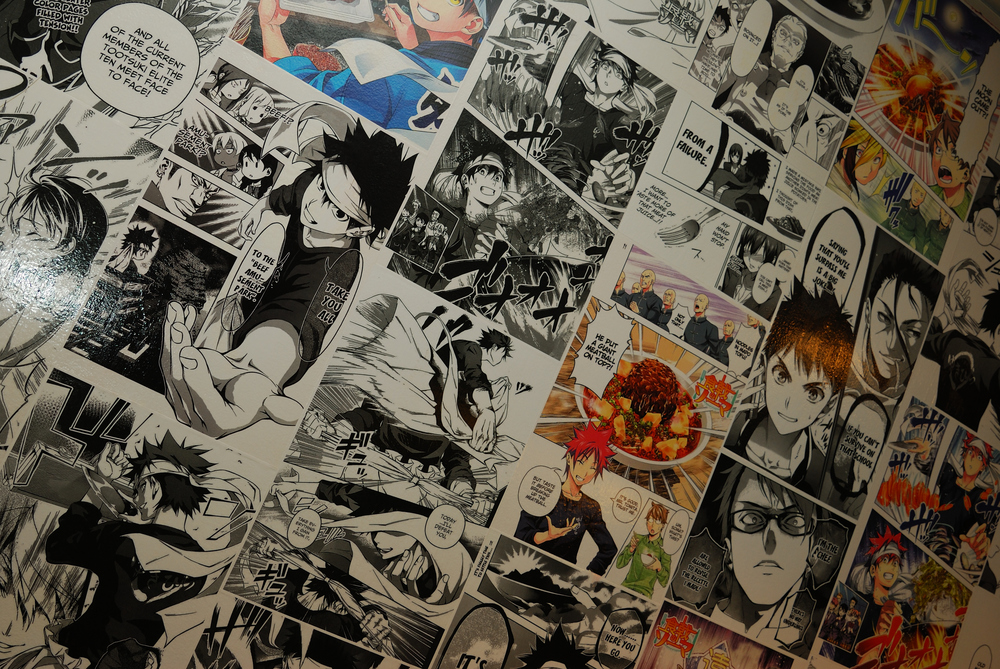 Manga Wall Close Up.JPG