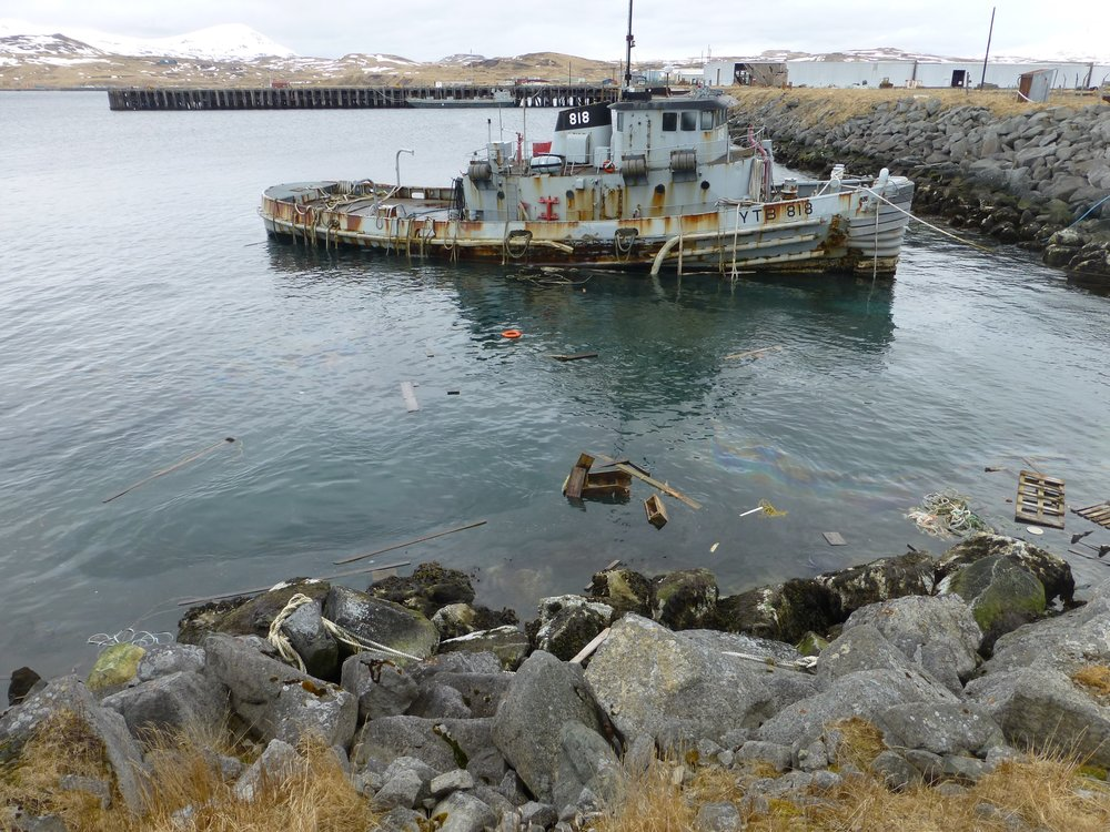 Adak, April 2016 Photo provided by ADNR