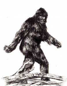 patty_the_sasquatch_by_rowdyrobert-d2yqftm