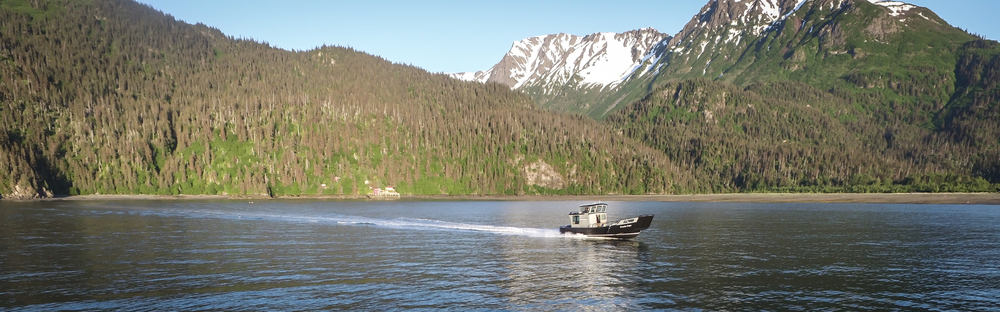 Coldwater Taxi And Freight