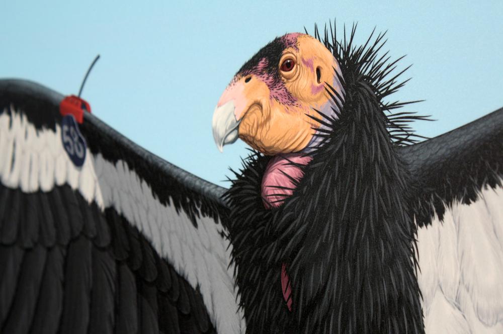 El Condor de California Pasa (detail)