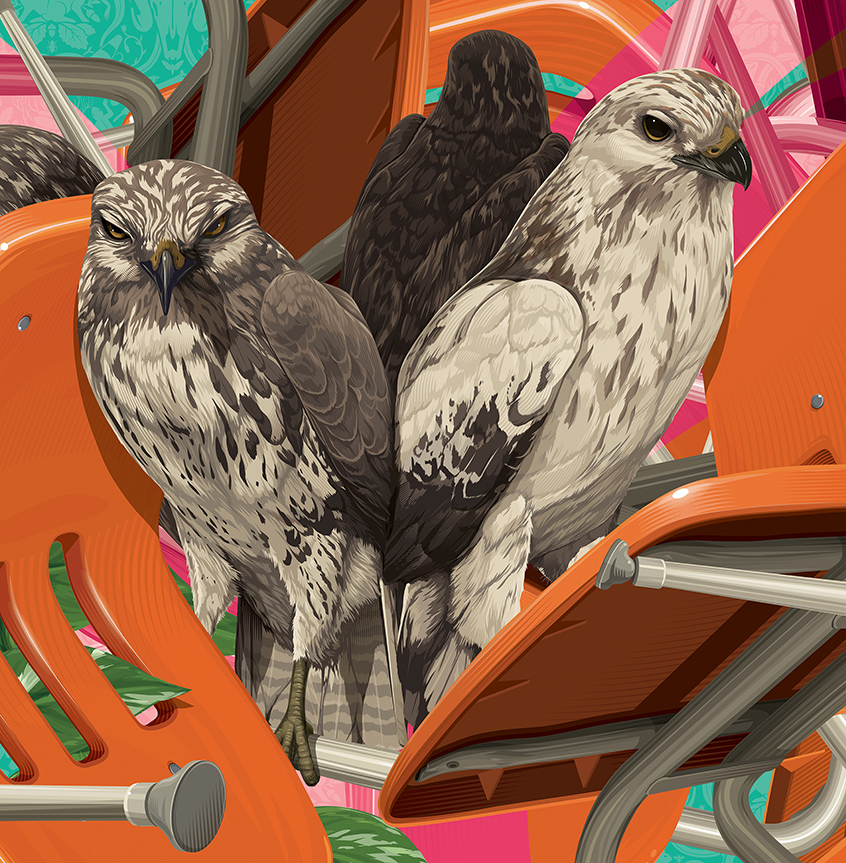 Learn to Know Your Hawks (detail), 2015
