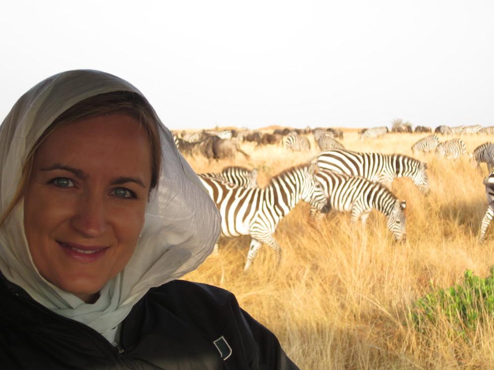 Zebras Masai Mara Safari
