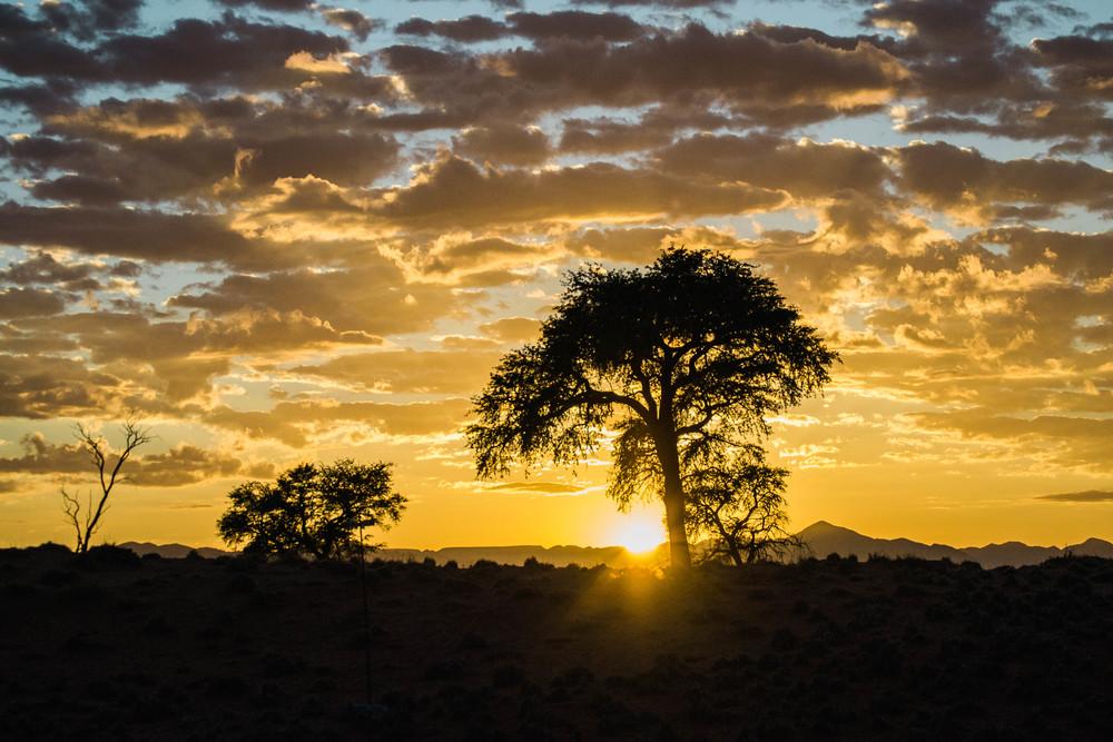 Namib+16.jpg