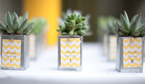 orange county wedding event planner baby planters