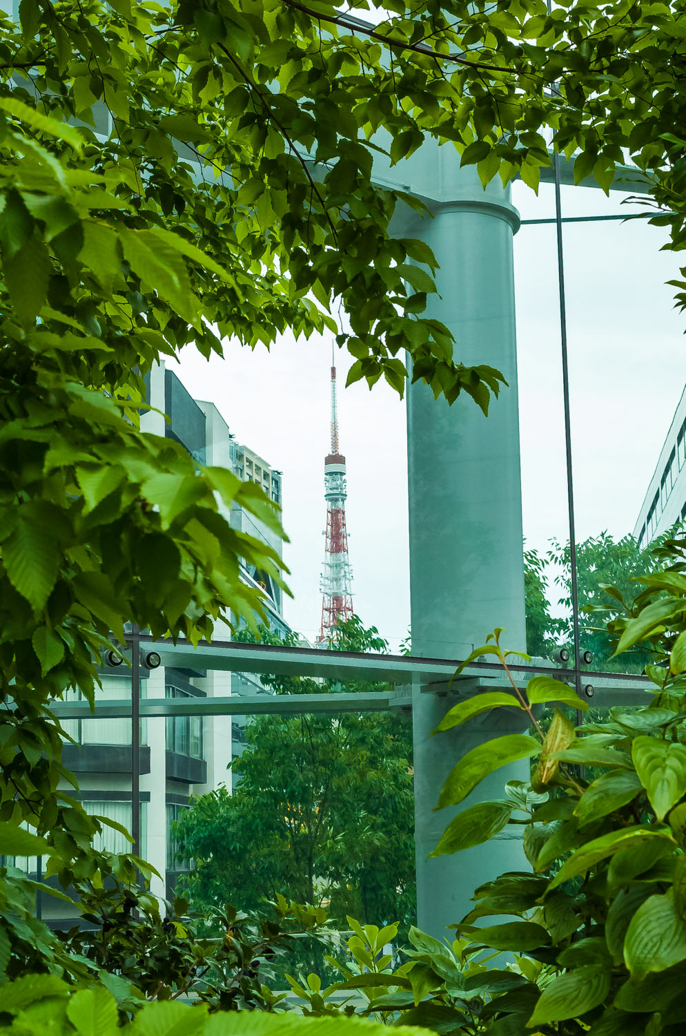 Tokyo Tower surrounded by green