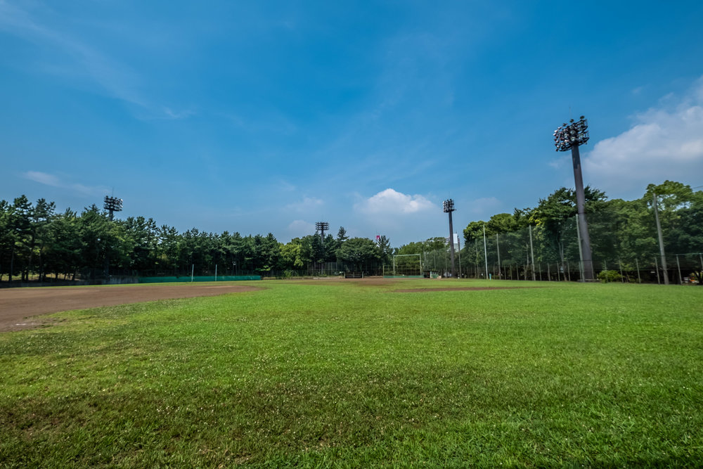 Need a ground for your baseball team's practice, no problem there either!
