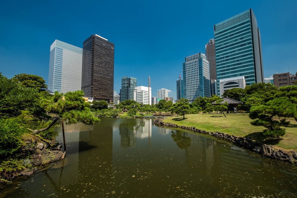 With the new Crea Tower being built next to the World Trade Center Building, Tokyo Tower is no longer visible from some parts of Kyu Shiba Rikyu Gardens