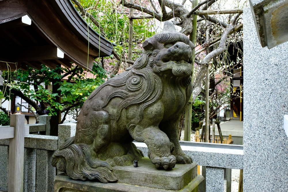 A  komainu  (lion dog deity), one of a pair, that guards the entrance to the shrine