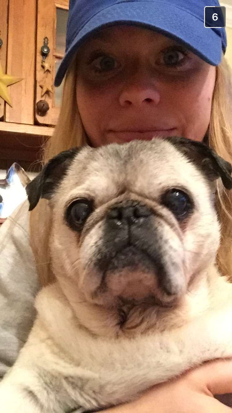 Munch hanging out on my lap for a quick snapchat!
