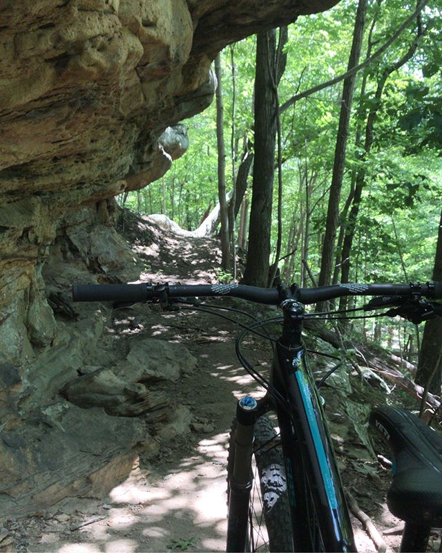 Is it summertime yet..? * * #mountainbike #mtb #mtblife #singletrack #enduromtb #ridemoonshine #appalachia #kentucky #eastky #getoutside #explore #adventure #ridefox #yeticycles #freehubmag #pinkbike #myeastkyreborn #feeltheburg #visit_prestonsburg #sugarcampmtb
