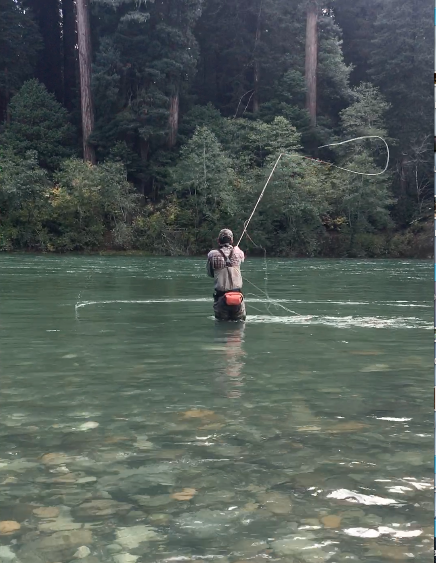 Neil Mongrain sends out another cast to the far seam at Jed Smith. Early rains = fall kings on the Smith River