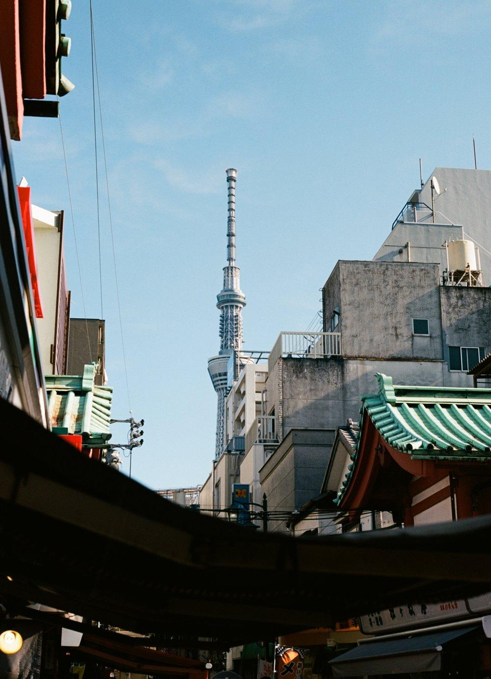 Tokyo-Ektar-11.jpg