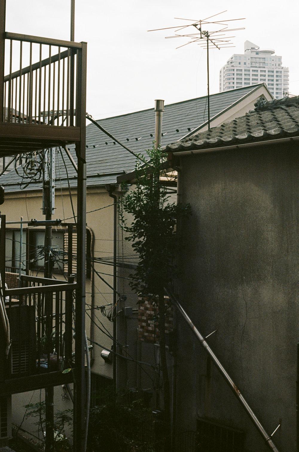 Tokyo-Ektar-25.jpg