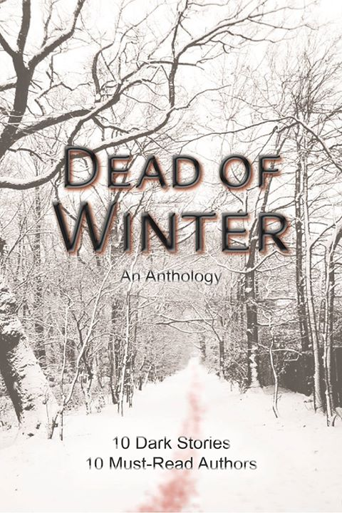 The Dead of Winter book cover