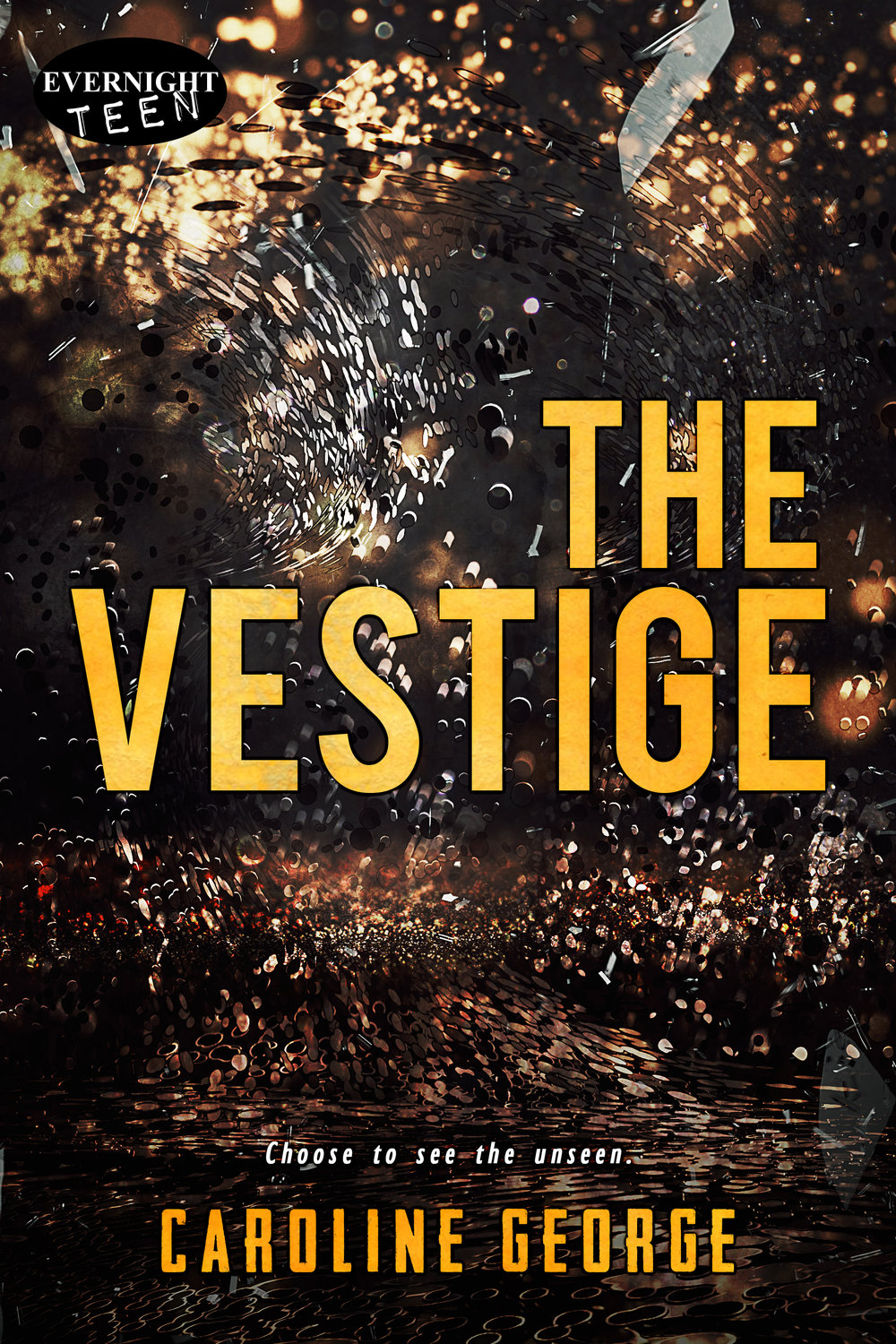 The Vestige Book Cover - Author Caroline George