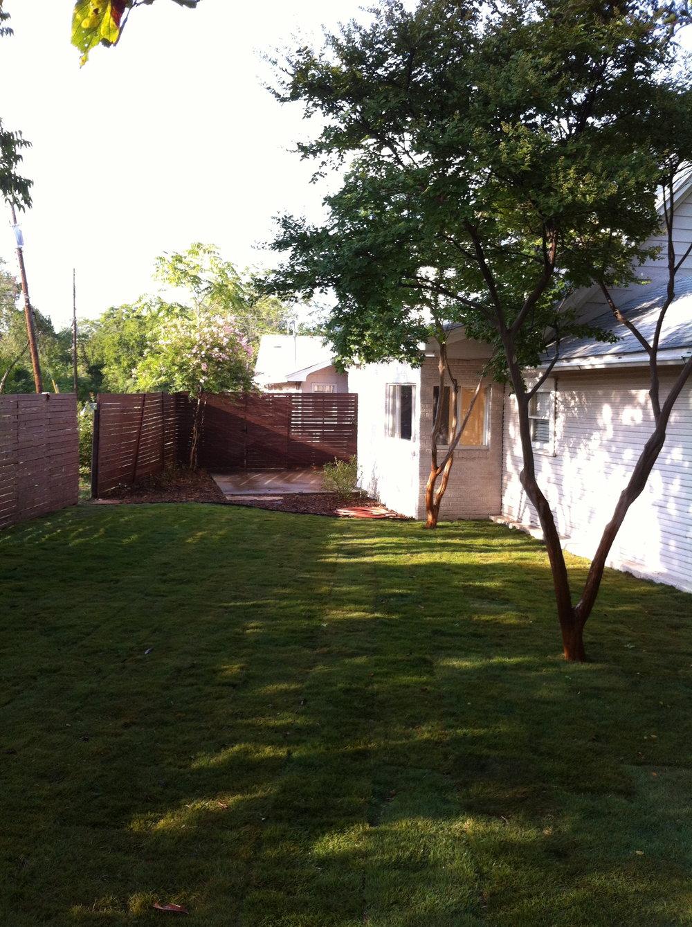 815 back yard2.jpg