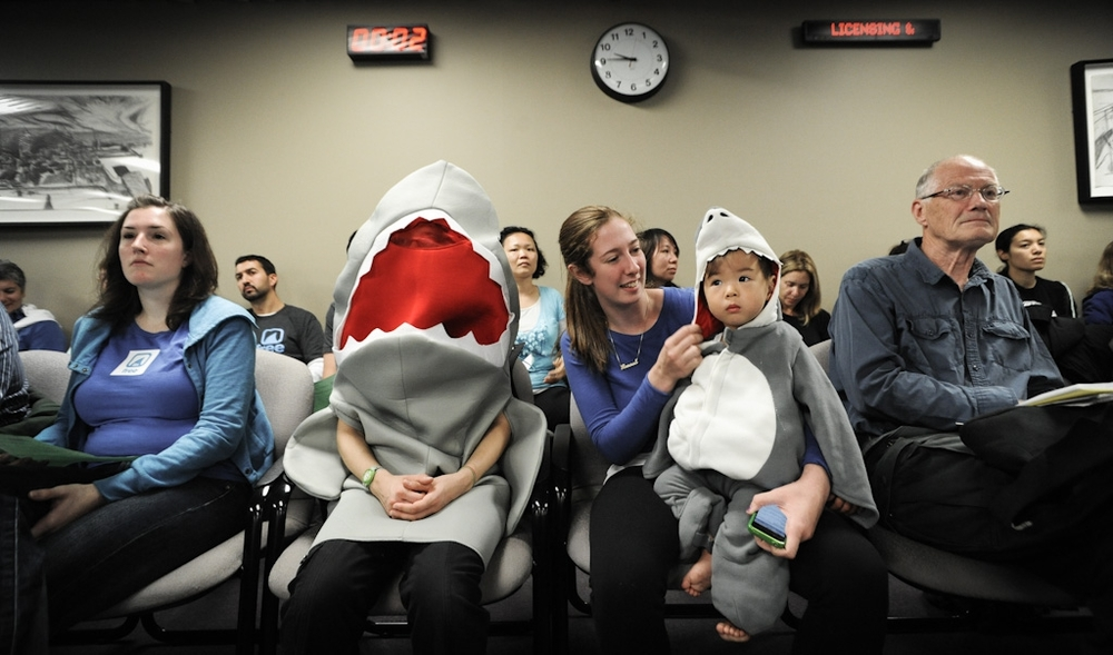 Activists in shark costumes show up at Toronto City Hall in support of a shark fin ban. Photo: JMcArthur / We Animals